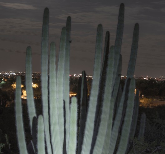 night photography 3