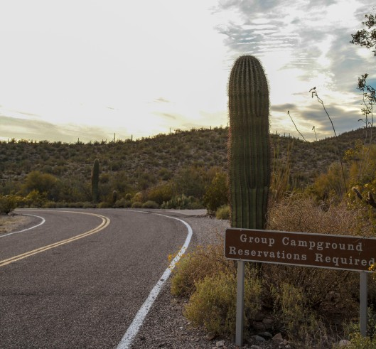 organ pipe group campground sign