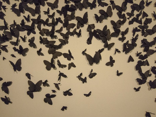 Paper butterflies everywhere -