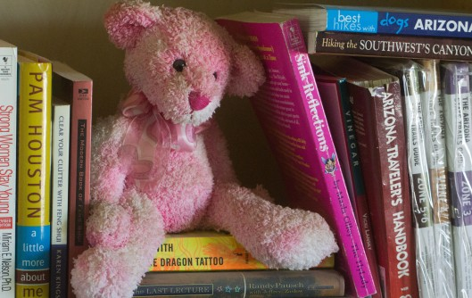 teddy and books