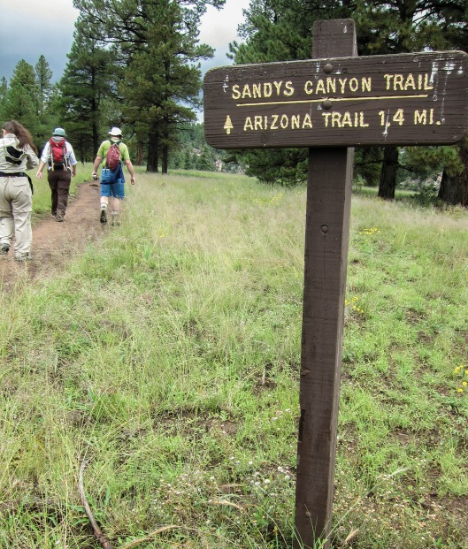 sandy's canyon trail getting started