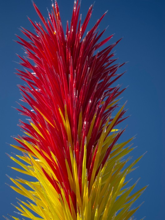chihuly red yellow