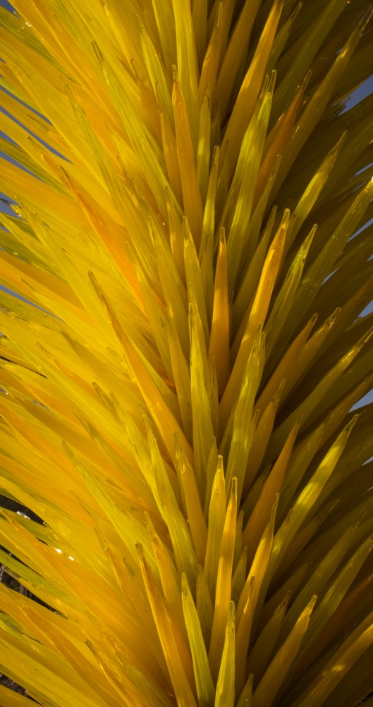 chihuly yellow glass
