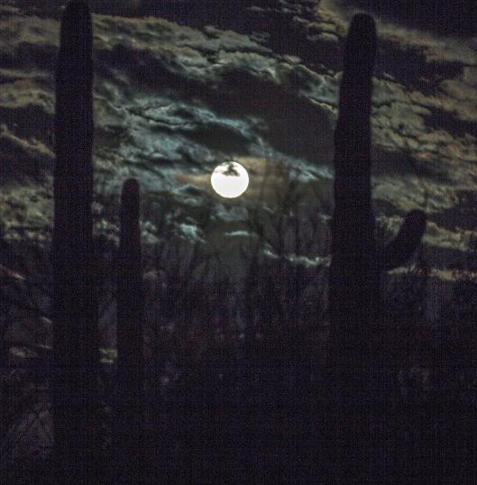 OP full moon 2