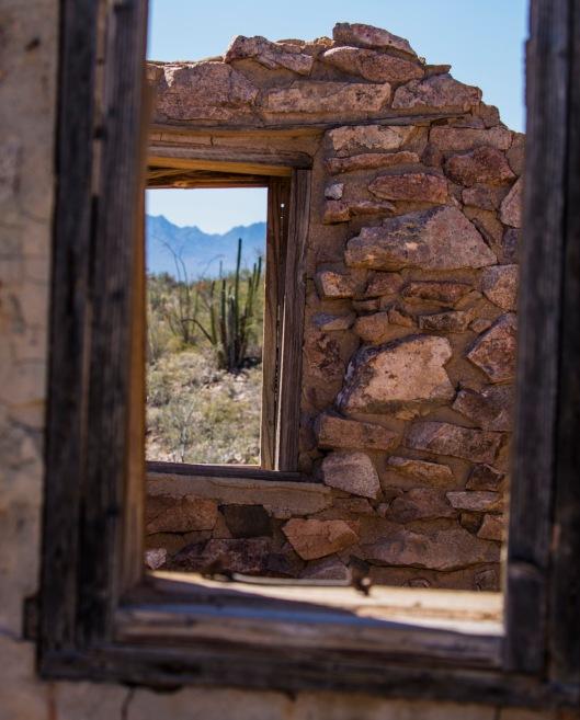 looking through window1