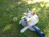 Sakari at four months